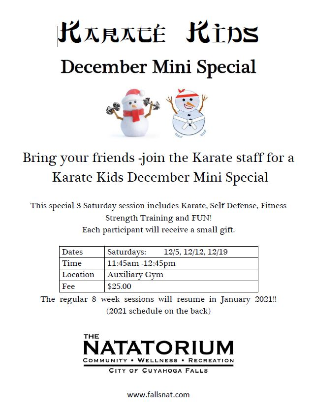 Karate Kids Mini Session 2020